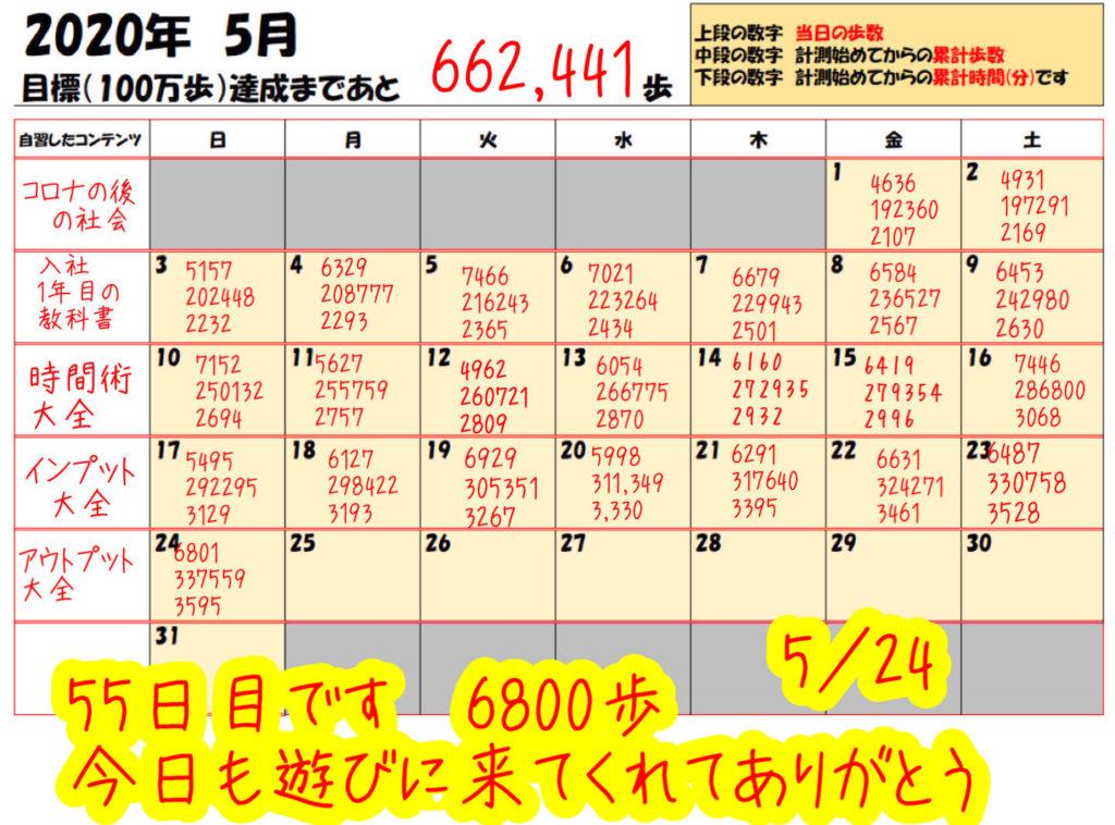 踏み台昇降 2020年5月24日の記録