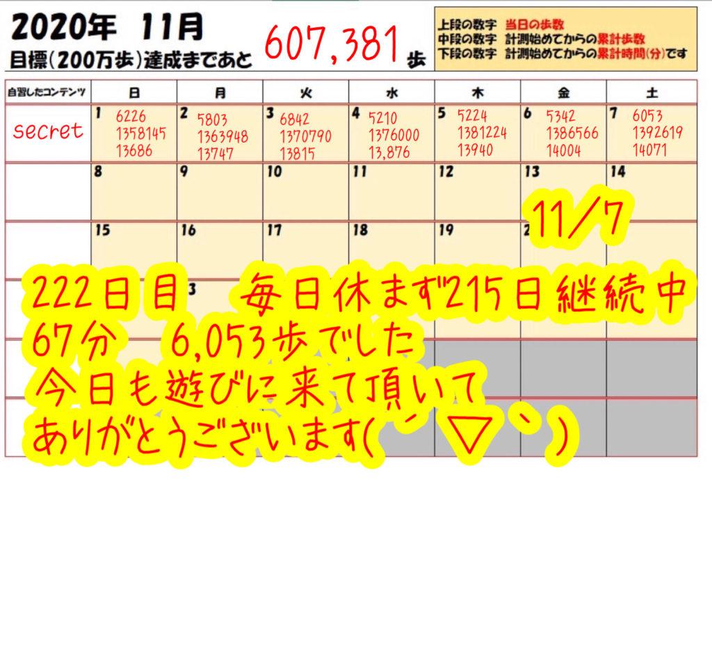 踏み台昇降 2020年11月7日の記録