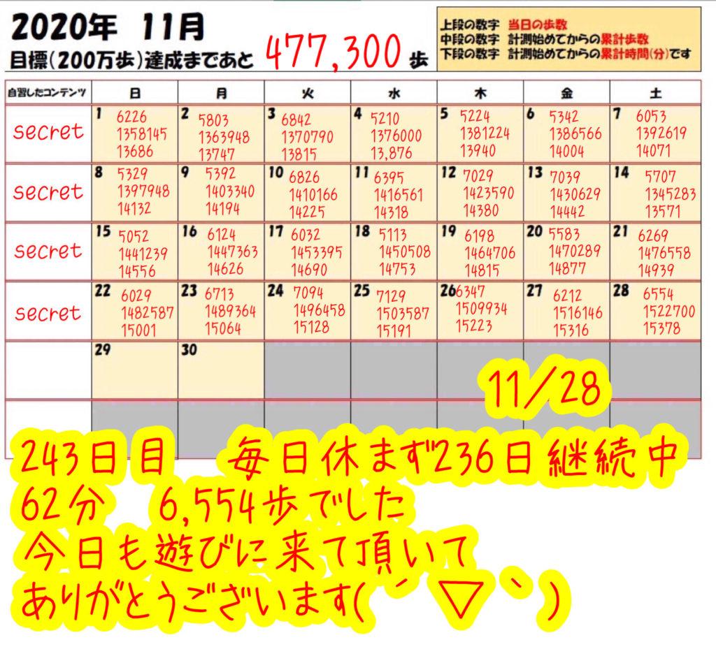踏み台昇降 2020年11月28日の記録