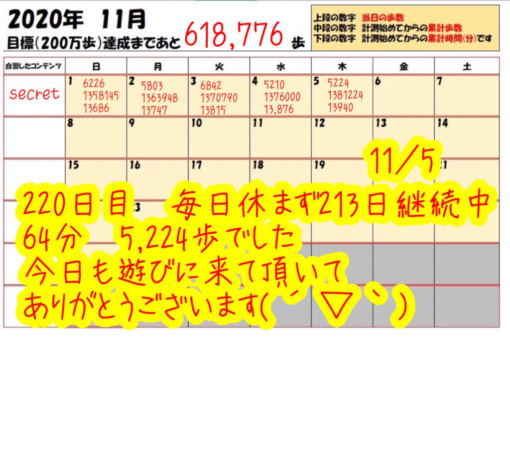 踏み台昇降 2020年11月5日の記録