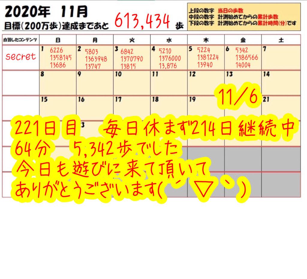 踏み台昇降 2020年11月6日の記録
