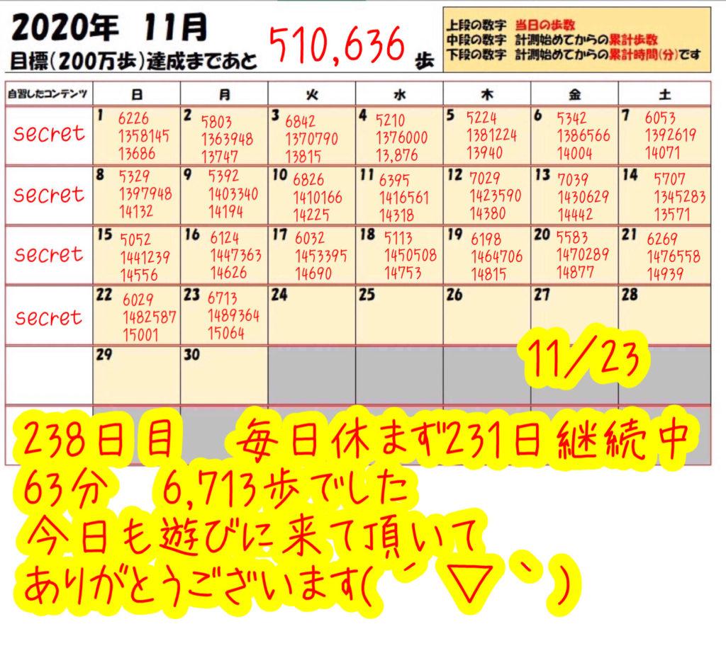 踏み台昇降 2020年11月23日の記録