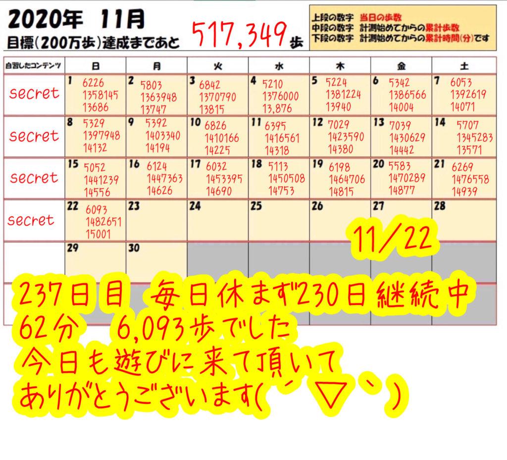 踏み台昇降 2020年11月22日の記録