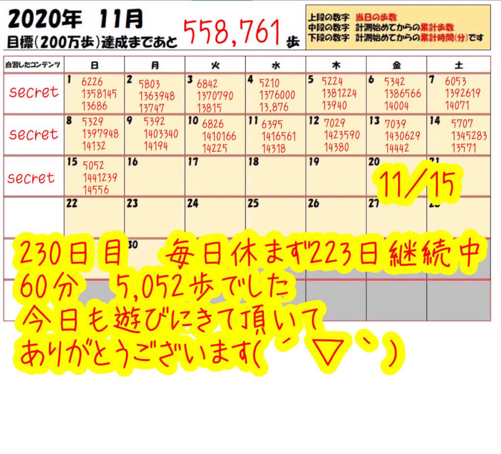 踏み台昇降 2020年11月15日の記録
