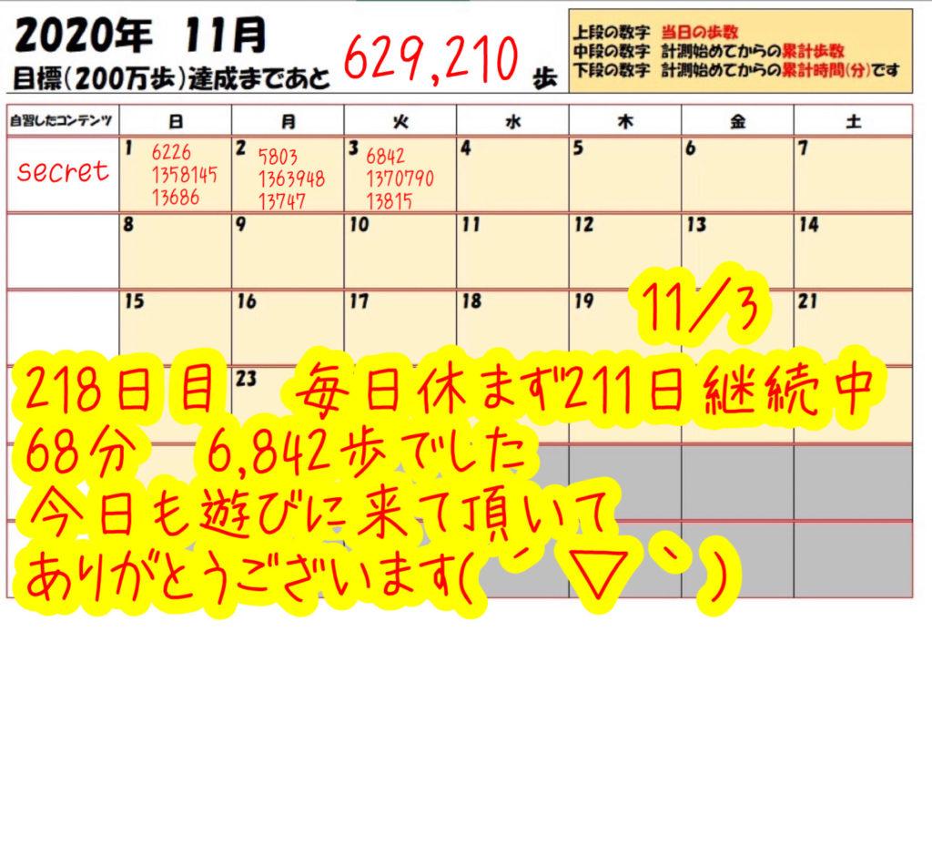 踏み台昇降 2020年11月3日の記録