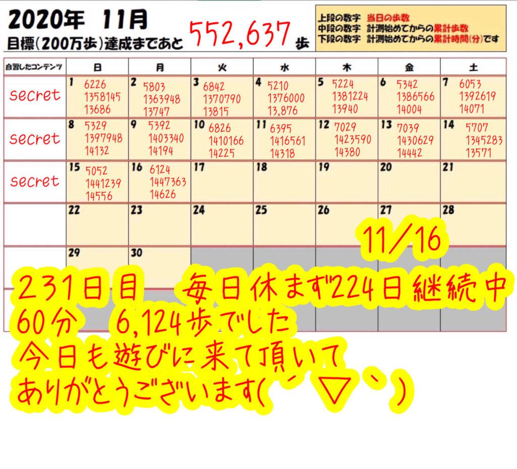 踏み台昇降 2020年11月16日の記録