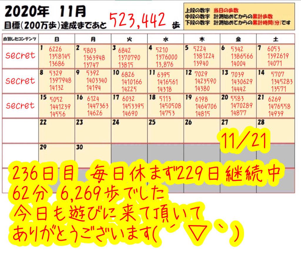 踏み台昇降 2020年11月21日の記録