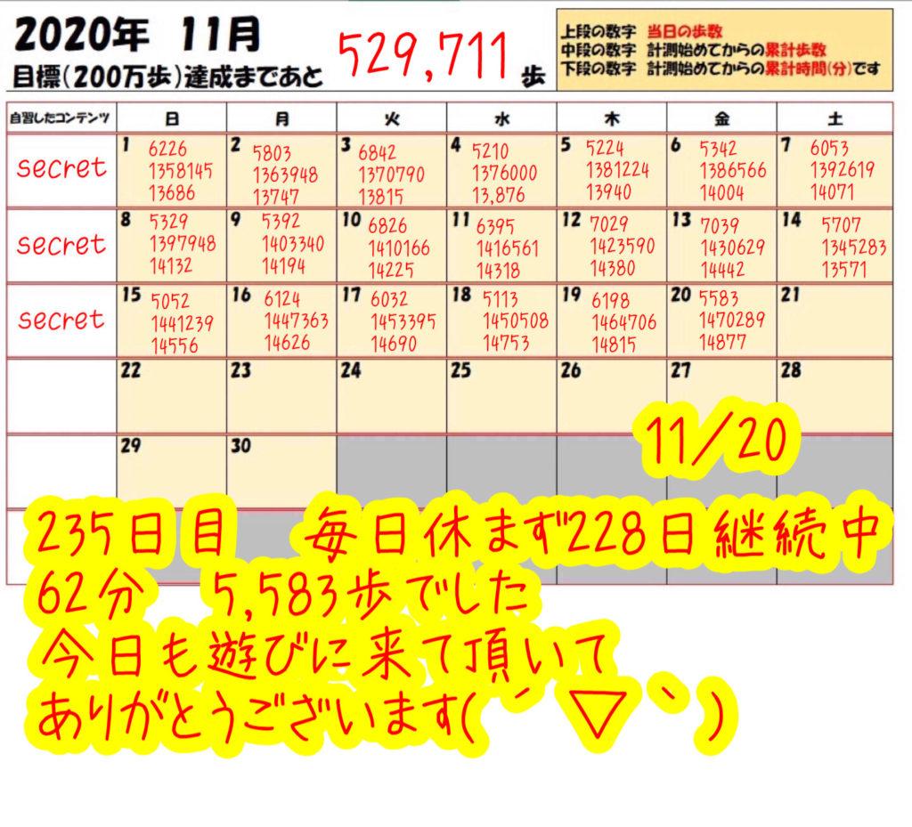 踏み台昇降 2020年11月20日の記録