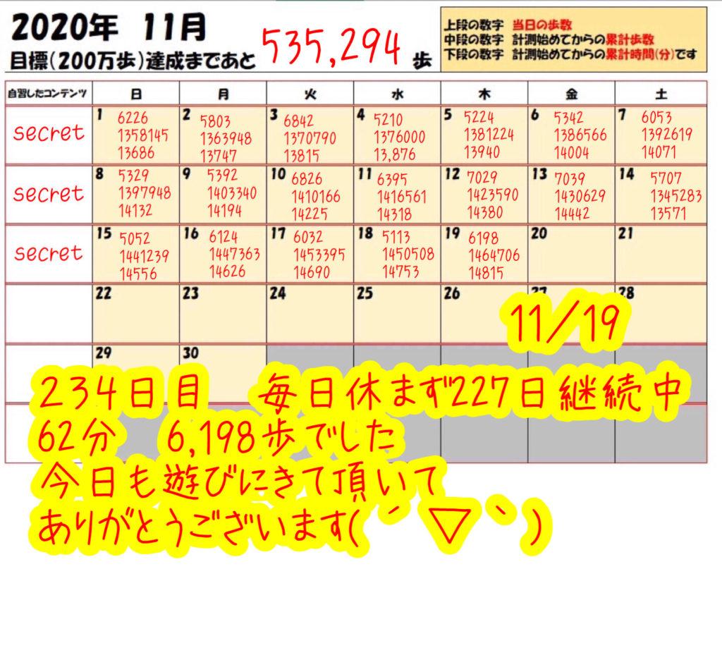 踏み台昇降 2020年11月19日の記録
