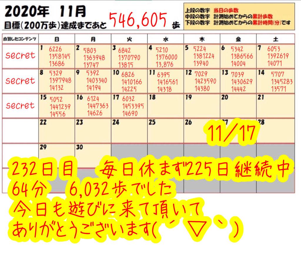 踏み台昇降 2020年11月17日の記録