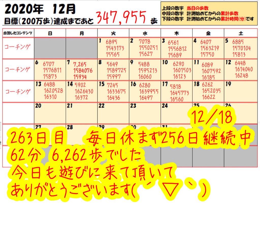 踏み台昇降 2020年12月18日の記録