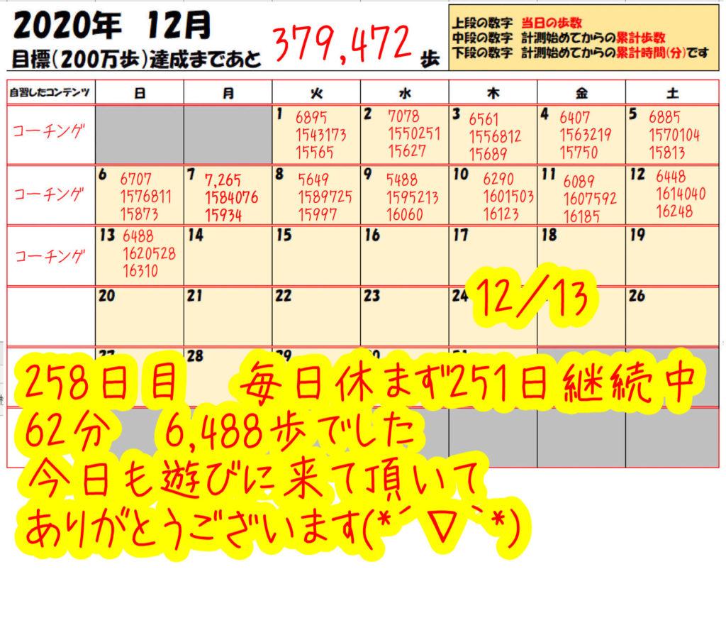 踏み台昇降 2020年12月13日の記録