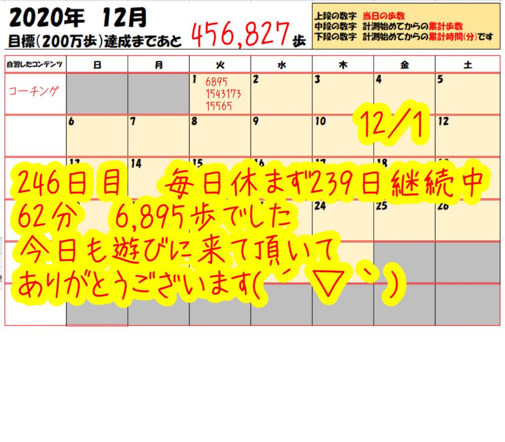 踏み台昇降 2020年12月01日の記録