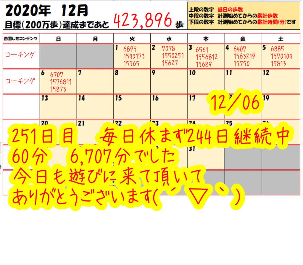 踏み台昇降 2020年12月06日の記録