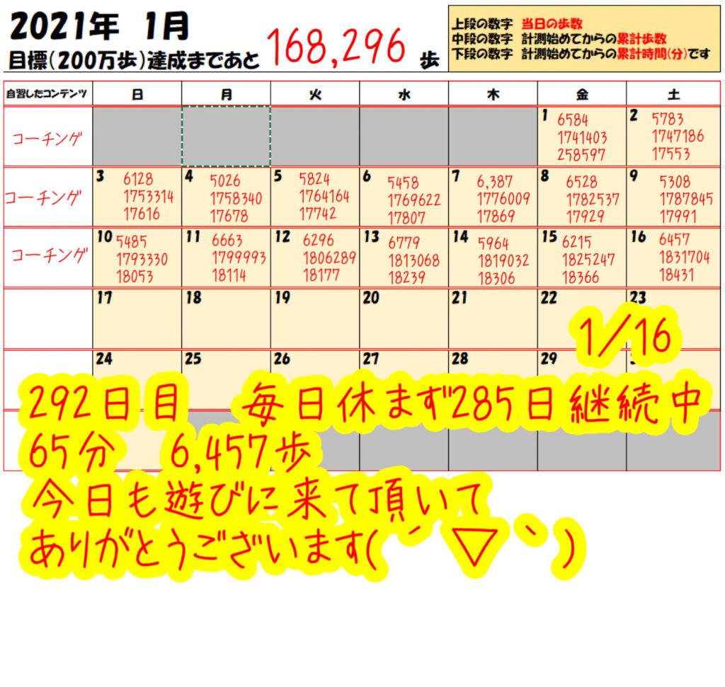 踏み台昇降 2021年1月16日の記録