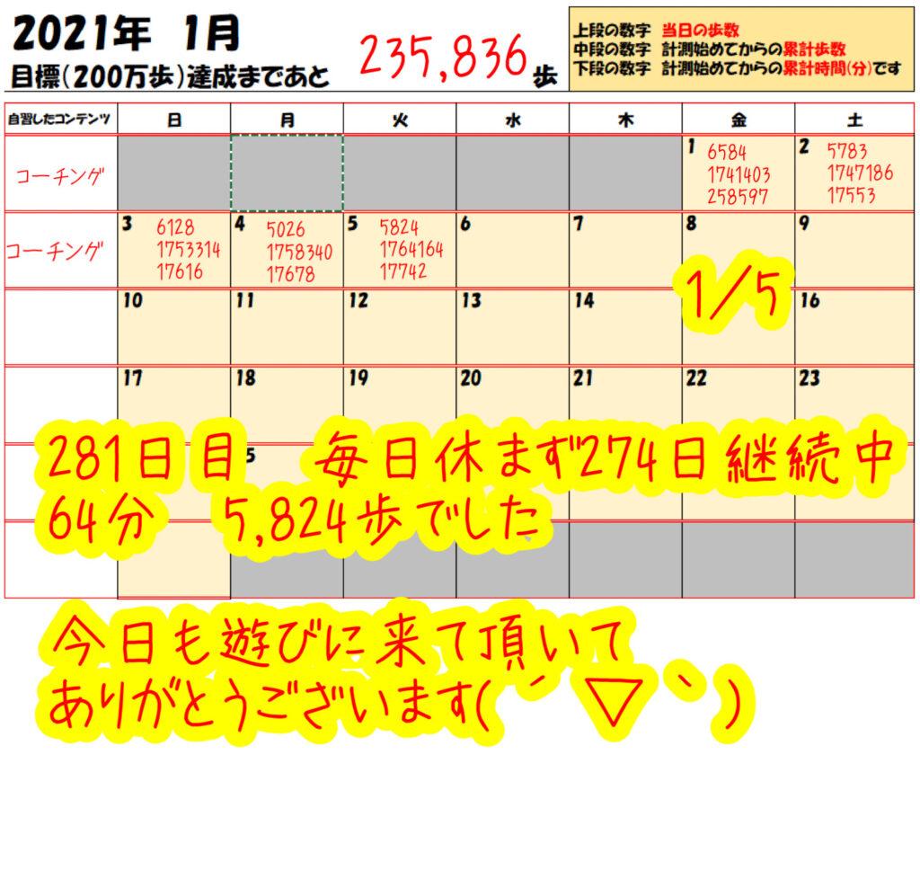 踏み台昇降 2021年1月5日の記録