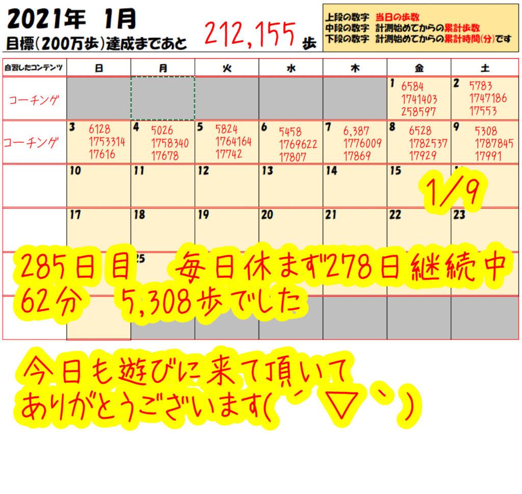 踏み台昇降 2021年1月9日の記録