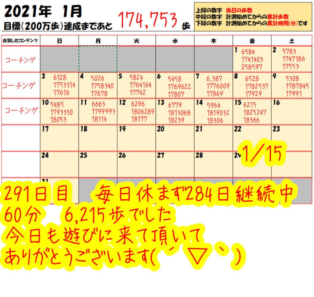 踏み台昇降 2021年1月15日の記録