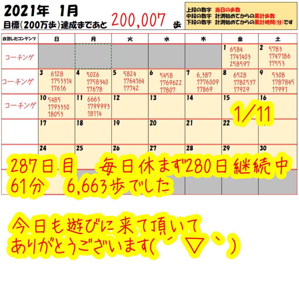 踏み台昇降 2021年1月11日の記録