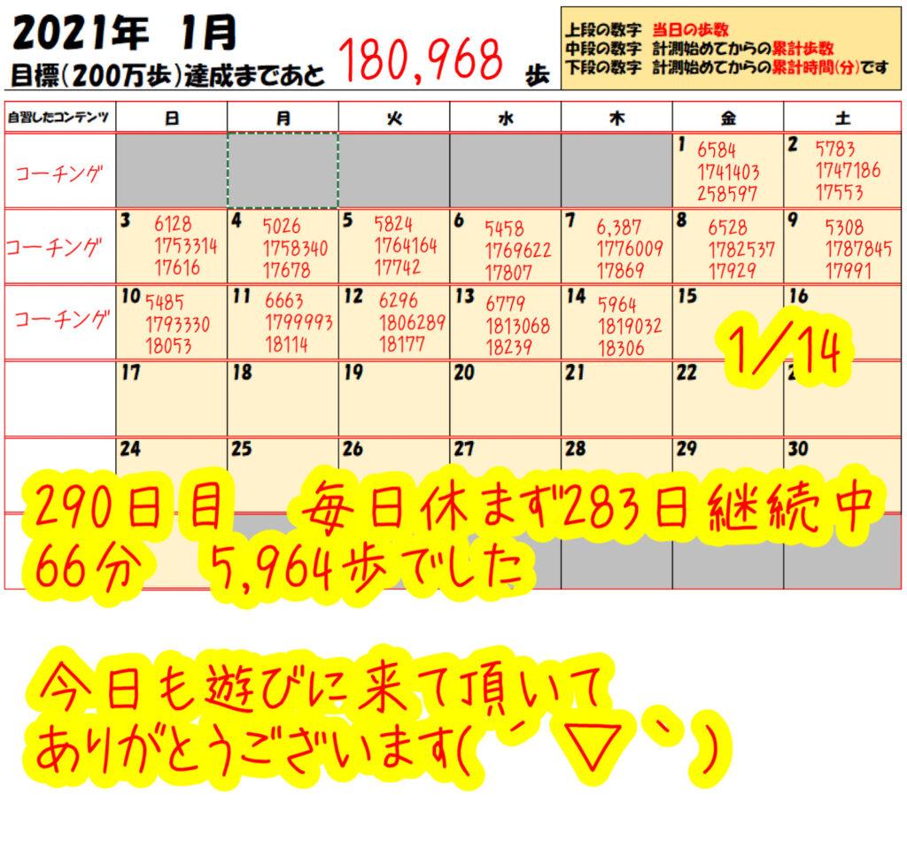 踏み台昇降 2021年1月14日の記録