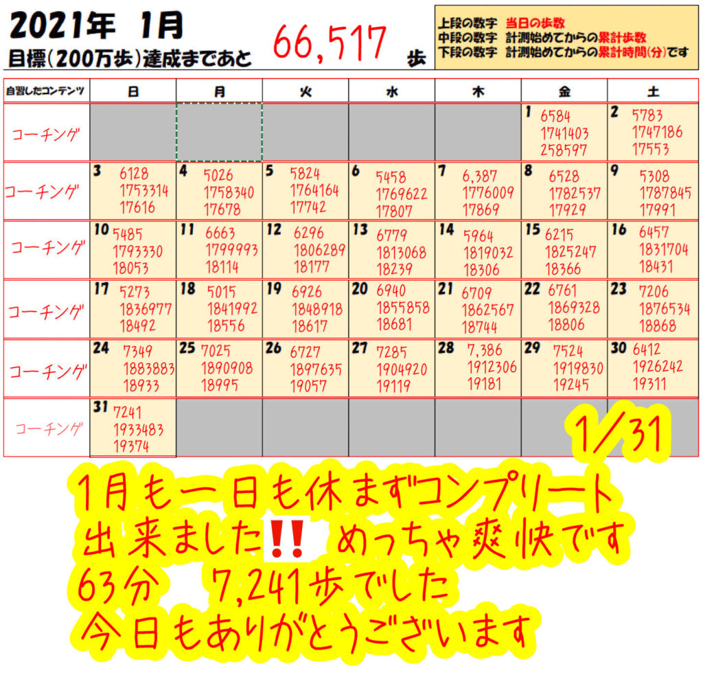 踏み台昇降 2021年1月31日の記録